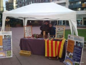 La nostra parada a la plaça Miquel Santaló de Girona. Foto: Fundació Astres